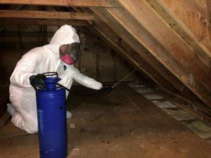 crime scene cleanup technician in attic